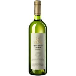 Pinot Bianco Trentino
